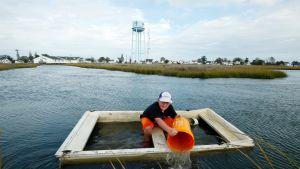 Poika äyskärö vettä veneestään Tangierin saaren edustalla.