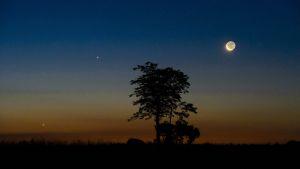 Venus (vasemmalla), Jupiter ja Kuu kuvattuna Salgotarjanissa Unkarissa elokuussa 2014.