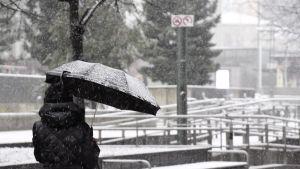 Henkilö suojautui lumisateelta sateenvarjolla Helsingissä 1. joulukuuta.