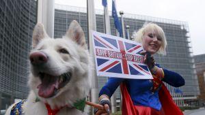 Brexitiä vastustava brittiläinen sarjakuvapiirtäjä Madaleina Kay kampanjoi viime viikolla Brysselissä.