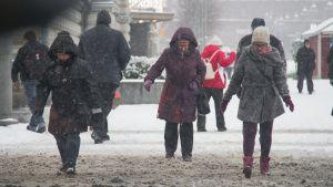 Lumisade Tampereella, suojatie, liikenne, talvi