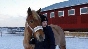 Lyyli-hevonen tallin pihassa