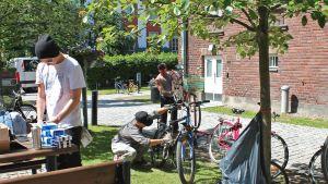 Jussi, Jan och Ville från Youth Behind Bars reparerar cyklar.