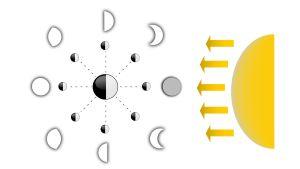 Månens olika faser illustrerat.