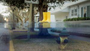 Dokumenttiprojekti: Tulevilla rannoilla
