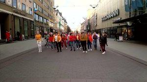 Vega Åboland videoklipp