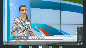 Tv-Nytt i Morgon-tv