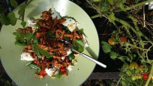 Sallad med tomater, basilika, mozzarella och kantareller