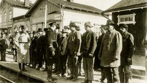 Röda fångar i Ekenäs 1918.