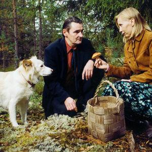 Hannibal (Tähti-koira), M (Markku Peltola) ja Irma (Kati Outinen) elokuvassa Mies vailla menneisyyttä