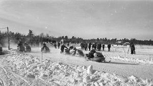 Moottorikelkoilla ajetaan kilpaa Inarissa, vuoden 1970 tienoilla