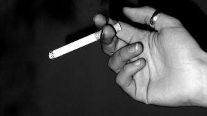 En hand som håller i en tobak.