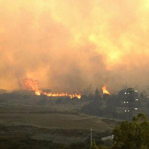 Brinnande landskap på Gran Canaria.