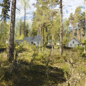 Modell för hur ett bostadsområde skulle se ut. På bilden finns hus inritade och de står i en skogsdunge.