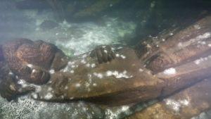på havsbottnet ligger en skulptur av något som påminner en människa