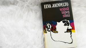 Eeva Kilven teos Vesissä toinen silmä karvalankamatolla