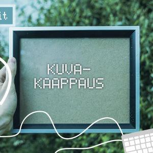 Digitreenien pääkuva. Taustakuvassa tyhjä taulu, jossa teksti kuvakaappaus.