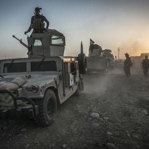 Kurdiska styrkor rycker fram mot Mosul från norr, nordost och väster men har lovat att inte tänga in i själva staden