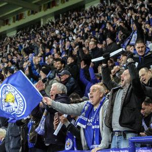 Leicestersupportrarna jublar över att laget tagit ledningen med 2–0 mot FC Brugge.