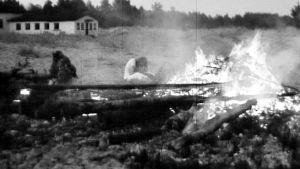 Kuva Yyterin juhannuksesta elokuvasta Perkele! Kuvia Suomesta