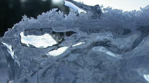 Pitsireunuksista jäätä.