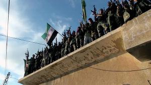 Syyrian vallankumouksen tavoitteena oli demokraattinen valtio. Miksi maa on ajautunut ääriliikkeiden käsiin?