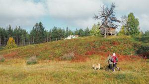 Mies, nainen ja koira ulkoilemassa kumpuilevan niityn laidalla.