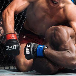 UFC-match.