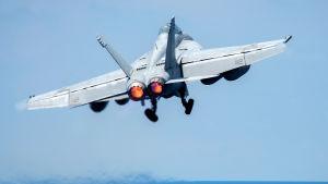 Det var ett amerikansk jaktplan av typen F/A-18E Super Hornet som sköt ner ett syriskt jaktplan söder om Raqqa