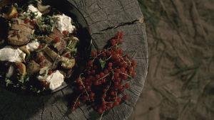 Stekt gräsand med rovor