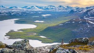 Landskapsbild från Kilpisjärvi, i förgrunden en fjällripa som blickar ut. Längst bort Saana-fjället.