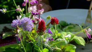 Blombukett av blandade trädgårdsblommor
