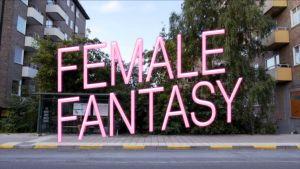 Ur filmen Female Fantasy
