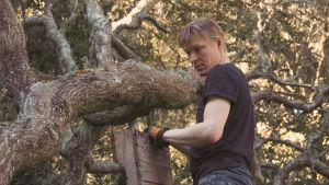 Jyri Engeström puussa