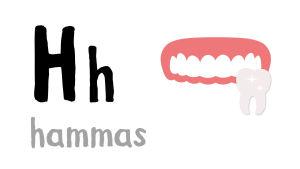 H - hammas