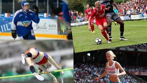 Finlandssvenska idrottare Camilla Richardsson, Robin Salo, Fredrik Jensen, Alina Strömberg