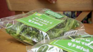 Valmispakattuja salaattiaineksia sarjassa Ruoka-aikoja