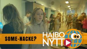 Hajbo Nytt om nackproblem