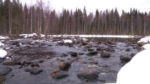 Ala-Koitajoki