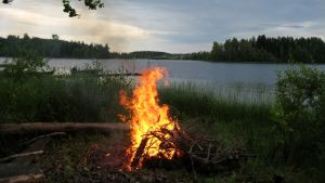 Juhannus, juhannusilta. Juhannuskokko järven rannalla (kokko, tuli). Suodenniemi.