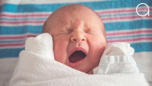 Vastasyntynyt kapalossa oleva vauva haukottelee.