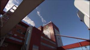 UPM:n Rauman paperitehdas