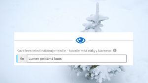 Taustakuvassa lumen peittävä kuusi. Päällä kuvakaappaus Ylen julkaisujärjestelmän alt-tekstin kentästä.