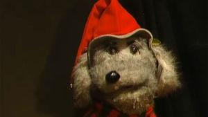 Ransu-koira Yksi yö jouluun -ohjelmassa