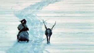 Skierri – vaivaiskoivujen maa (1982)