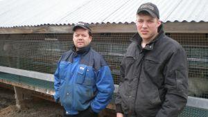 Ralf och Mathias Heselius i Kovjoki, Nykarleby