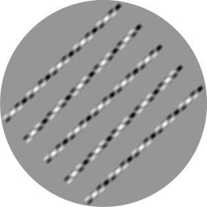 Akiyoshi Kitaokan illuusio