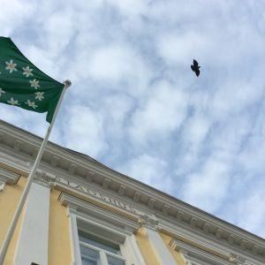Gamla stadshuset i Ekenäs ur grodperspekti, Raseborgs vitsippsflagga vajar i stången, en kråka flyger på himlen.
