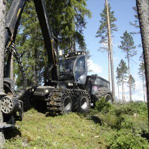 Skogsmaskintillverkaren Logset har fått en betydande beställning från Chile