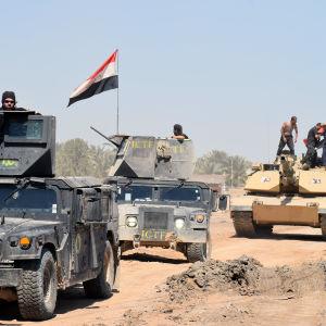 Irakiska styrkor i en militäroperatin mot IS i staden Heet 2.4.2016